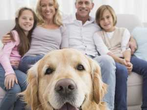 Here's how a family pet will help your children