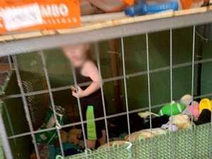 Toddler found in cage with abused animals
