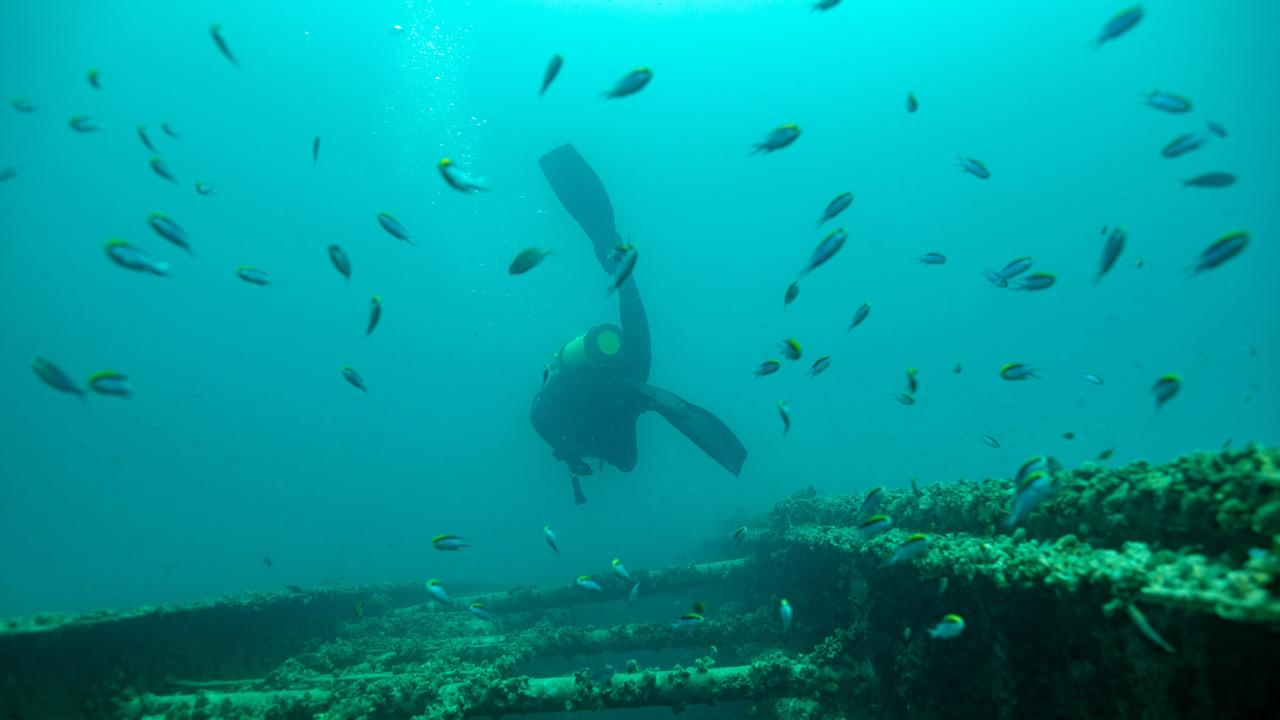 Underwater views of diver and fish school near the ex-HMAS Tobruk artificial reef scuttled off the coast near Bundaberg, Fraser Coast, Queensland, Australia.