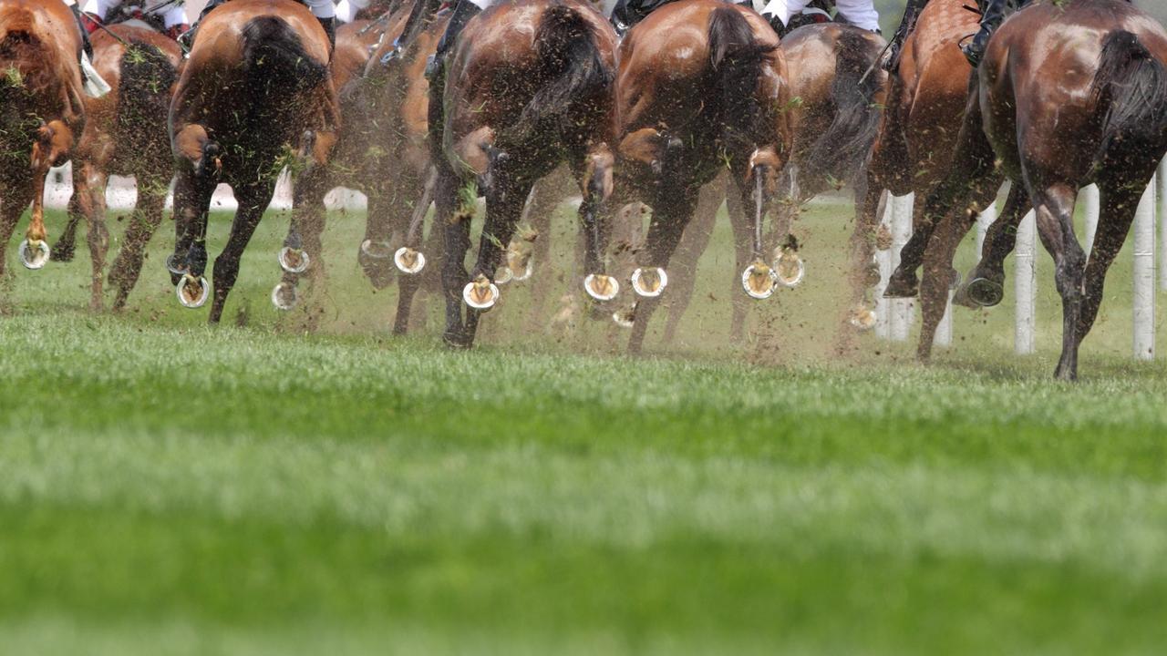 Emerald Jockey Club to share in $2.6 million funding.