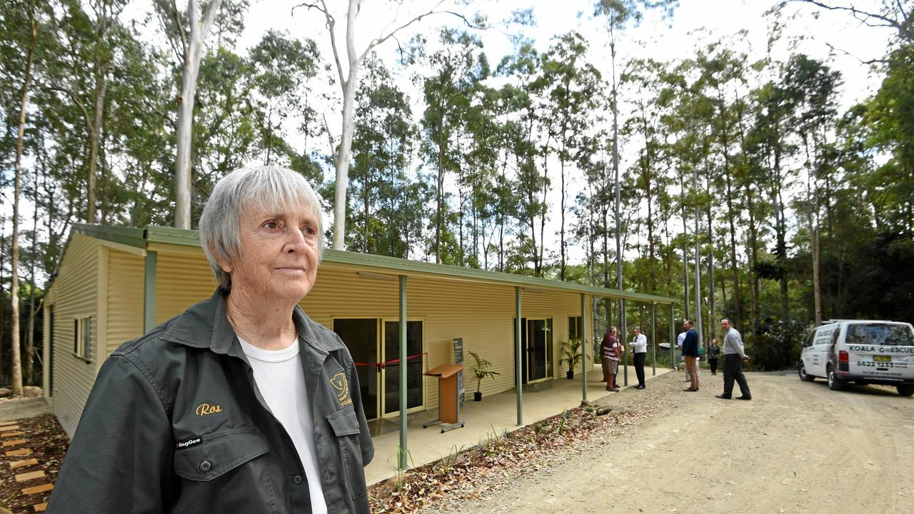 Friends of the Koala president Ros Irwin. Picture: Marc Stapelberg
