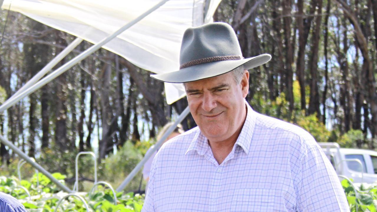 Queensland Agriculture Minister Mark Furner.