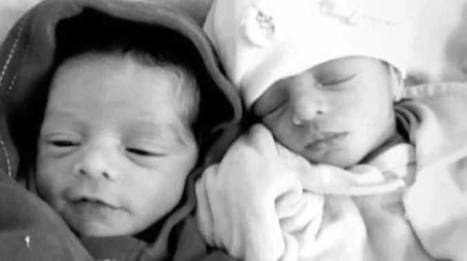 Newborn twins mauled to death by dog