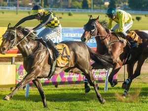 Can Cogliere join elite South Grafton Cup company?