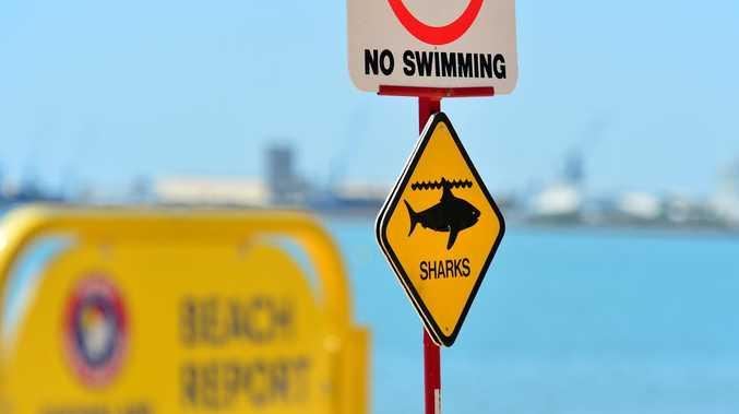 BREAKING: Shark bite reported at Fraser Island