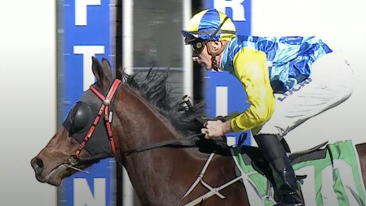 Ben Looker finishes well ahead of the pack on Tony Newing-trained Gogh Fox in race 3 of South Grafton Cup Day at the 2020 July Racing Carnival.