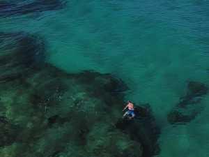 'SWIM PAST MY FEET': Couple shares Fraser shark encounter