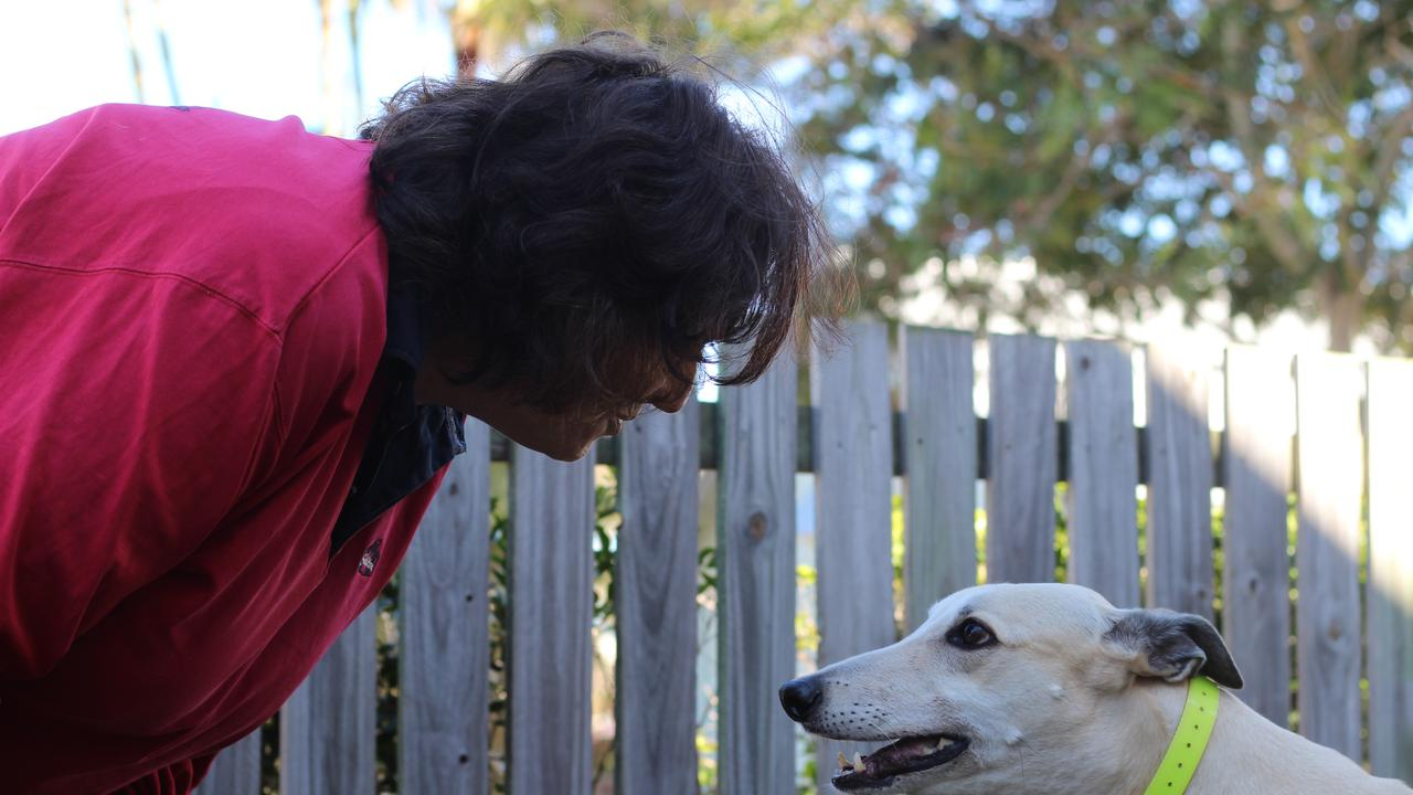 WINNING HEARTS: Retired champion greyhound Ron, or Smooth Blend as he was known on the track, with new owner Lorraine Richmond in Bundaberg.