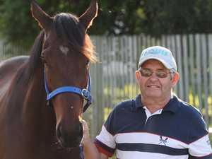 126 horses declared for bumper Rocky race meet tomorrow