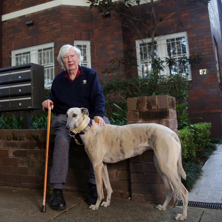 Colin Marshall in Rose Bay with his dog, Bu. Picture: Christian Gilles