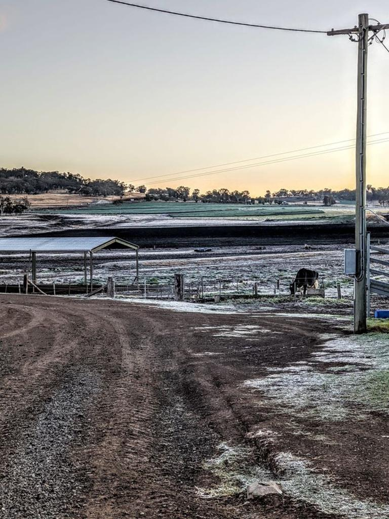 A beautiful image of frost in Sladevale this week, sent in by reader Trudi Hamilton Brown.