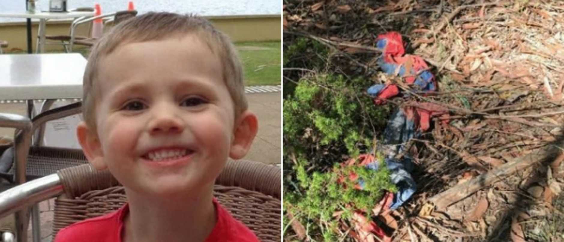 Documents detailing the investigation into William Tyrrell's disappearance have been released for the first time.