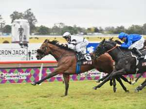 RAMORNIE HANDICAP: Signore Fox claims famous victory