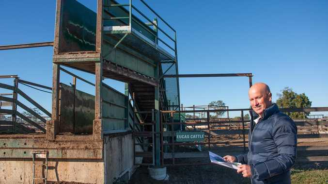 New upgrades to Saleyards will focus on animal welfare