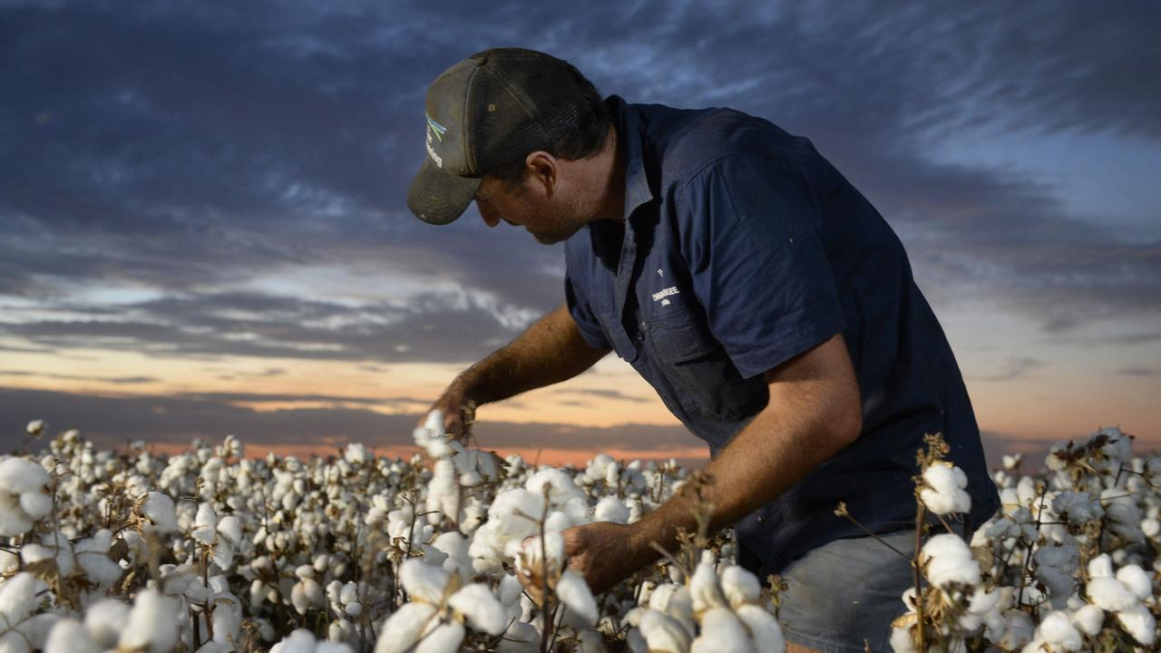 AI FARMING: A research project led by University of Southern Queensland has employed artificial intelligence help Australian cotton farmers. Pic: Supplied.
