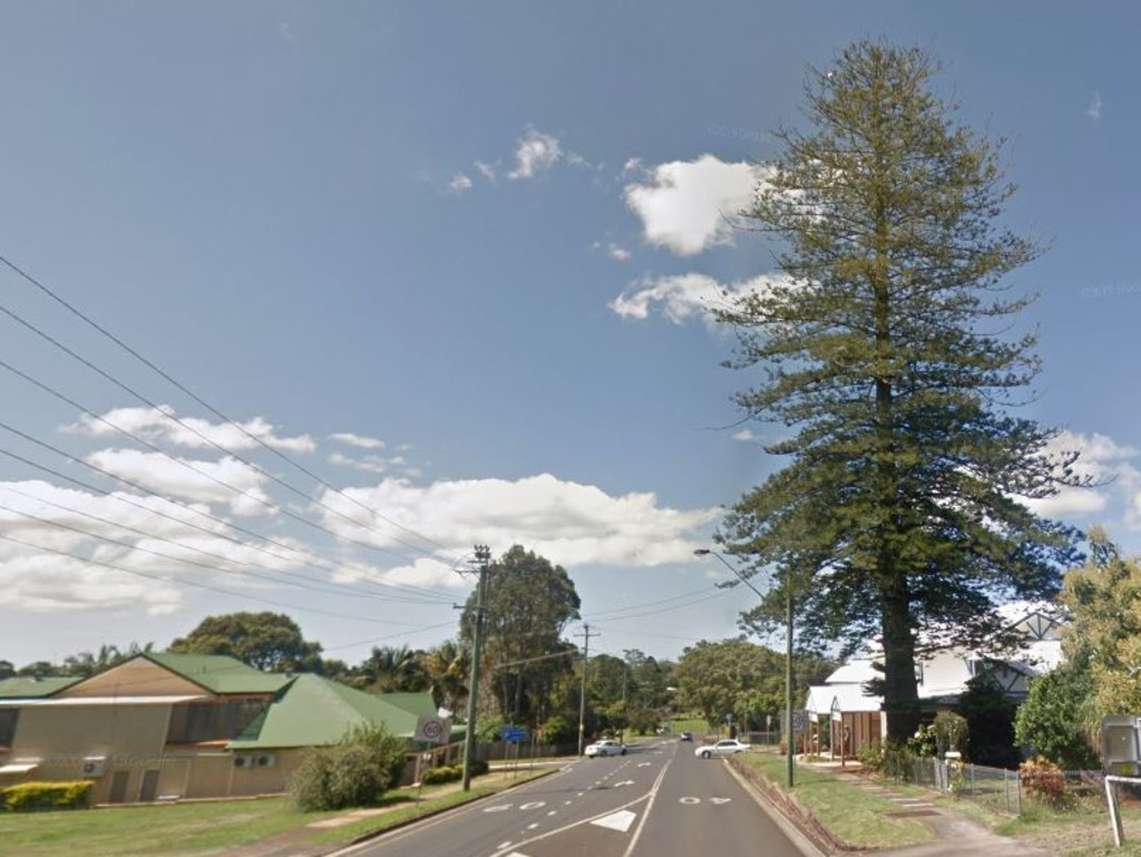 GOODBYE: The popular Norfolk Island Pine in Alstonville is set to be removed due to concerns regarding safety concerns.
