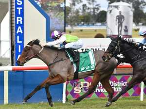 Cleary says Kiss My Swiss in Grafton Cup Day opener