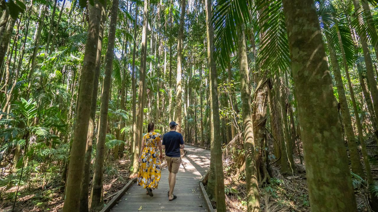 ESCAPE: Mary Cairncross Scenic Reserve. Picture: Tourism and Events Queensland
