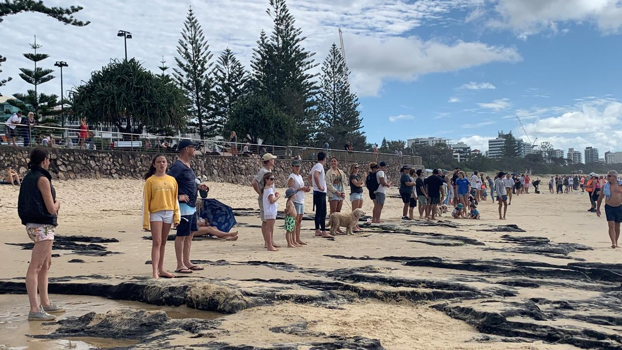 Protesters lining up at Alexandra Headland Beach. Photo: Eden Boyd
