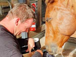 Celebrating a decade of vital support at animal farm 'oasis'