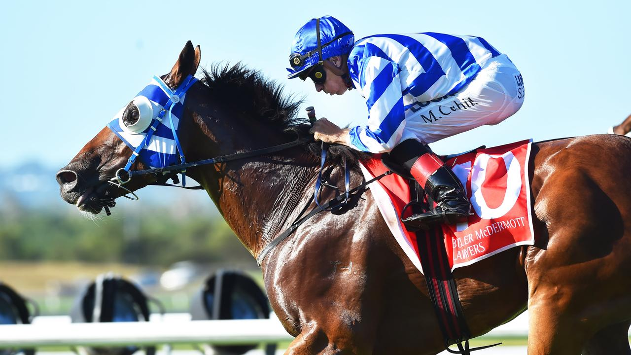 Balboa Rocks, a previous Rockhampton Cup placegetter, is third in line in the weights for Friday's running of the event.