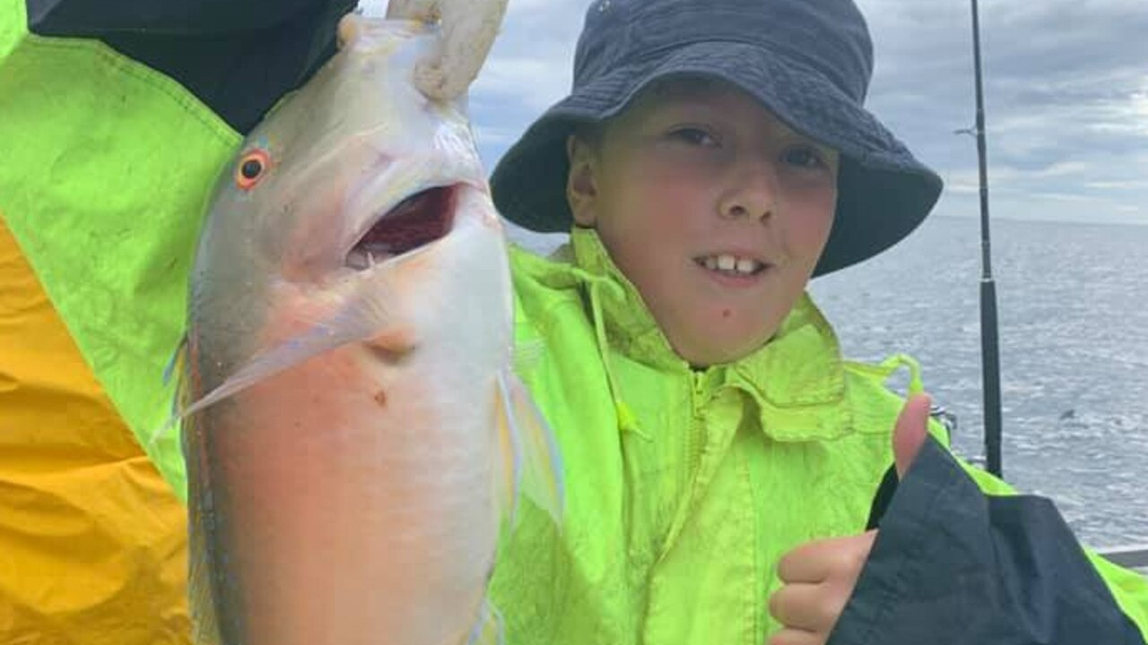 Myles Doman, 11, from Inverell, hooked onto a few nice Venus tusk fish while on a Reeltime Charters fishing trip.