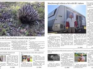 Your new digital edition of the Chronicle has arrived