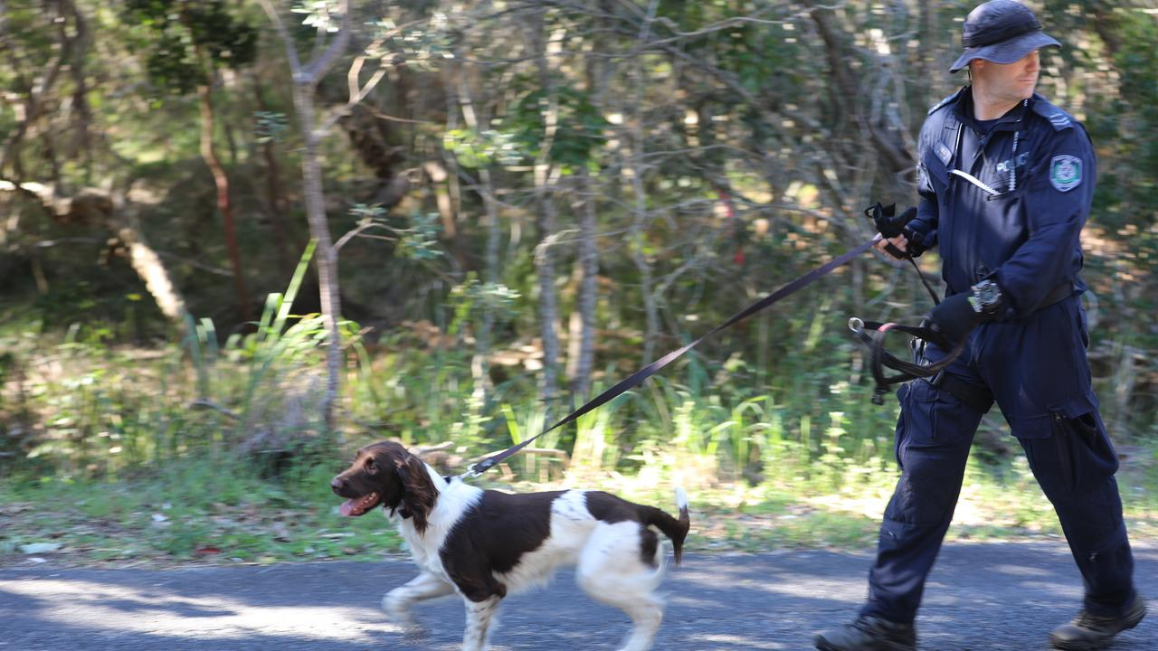 The dog squad was involved in an extensive search of bushland in Arakwal National Park in Byron Bay on Wednesday, July 15, 2020 as part of the investigation into the disappearance of Thea Liddle.