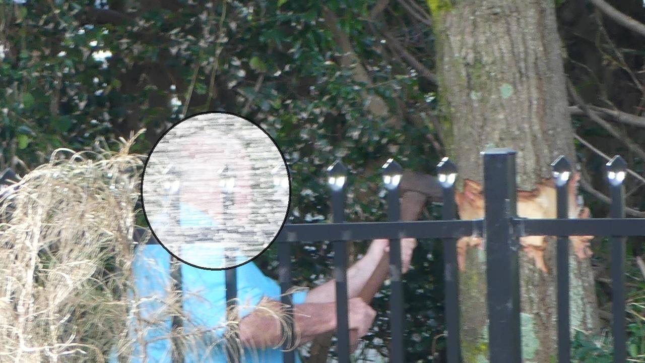 A cropped image showing a man ringbarking a native she-oak in the Big 4 Park Beach caravan park.