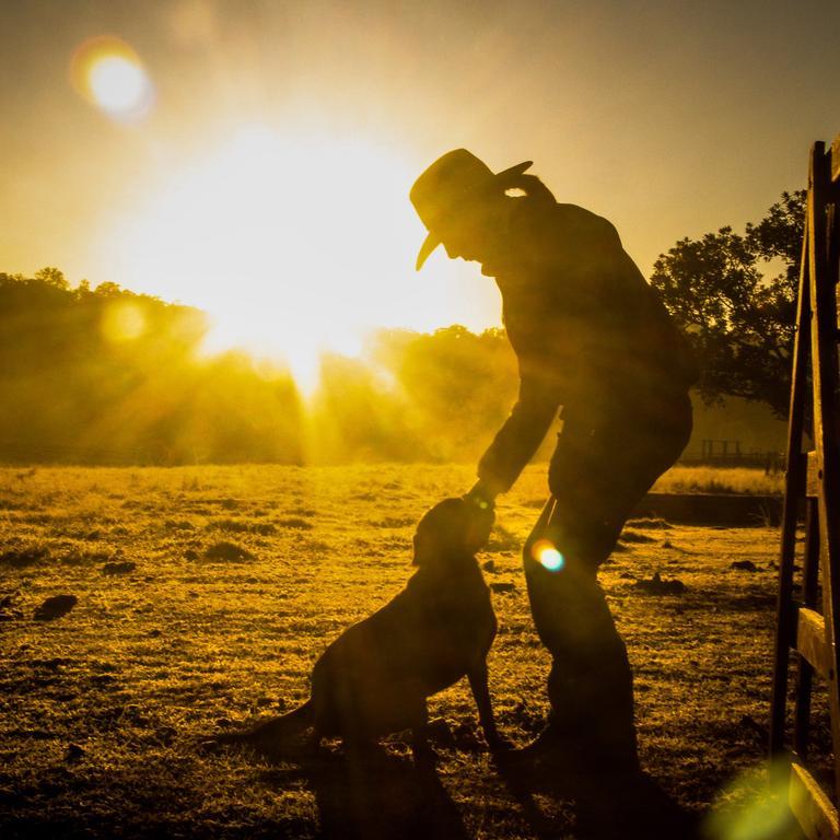 Glenda Rogan with her dog Jess, who ran second in a nationwide working dog challenge. Photo: Rebekah Rogan.