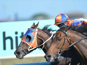 Plan to pit city against city in northern racing meets