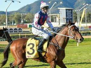 Punters wage a record $9.5 million on Rocky Cup meeting