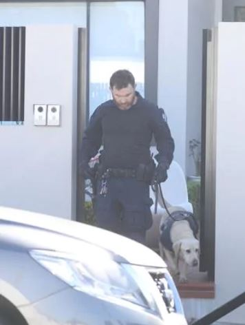 Sniffer dogs on the scene. Picture: John Grainger