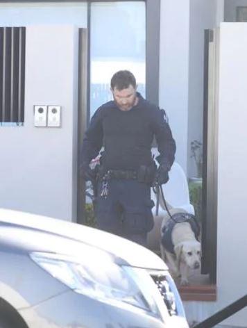 Sniffer dogs on the scene. Picture: John Grainger