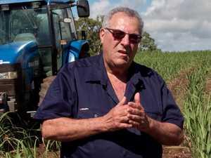 Farmers to lose $1.3 billion in 'zealous' reef push