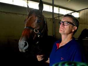 Racing commission reveals details of Vandyke guilty verdict