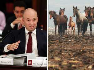 Godfather-style threat to minister: horse heads on your lawn