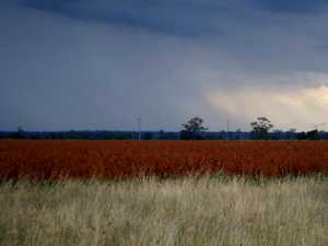 Rolling thunderstorm unleashed on the Western Downs