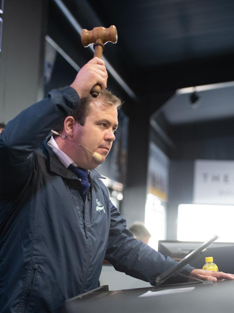 Clint Donovan at work at the Magic Millions Sales