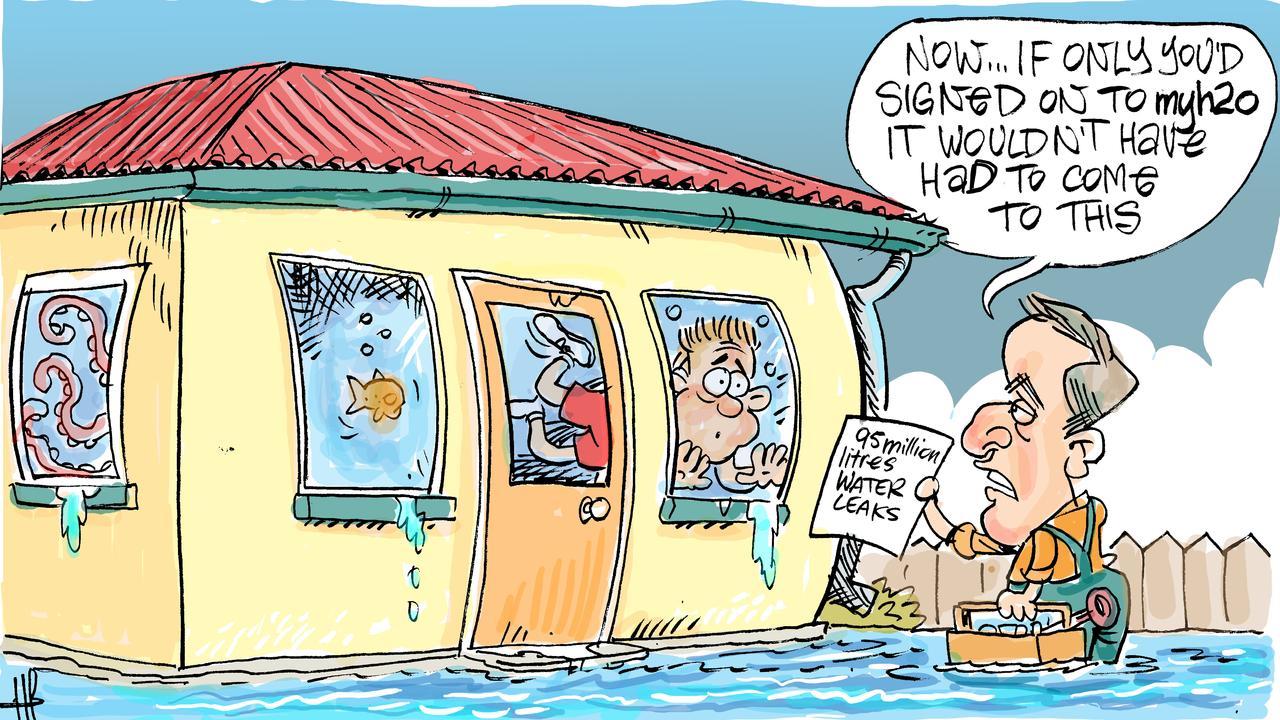 Cartoonist Harry Bruce's take on the Mackay region's annual water leakage.
