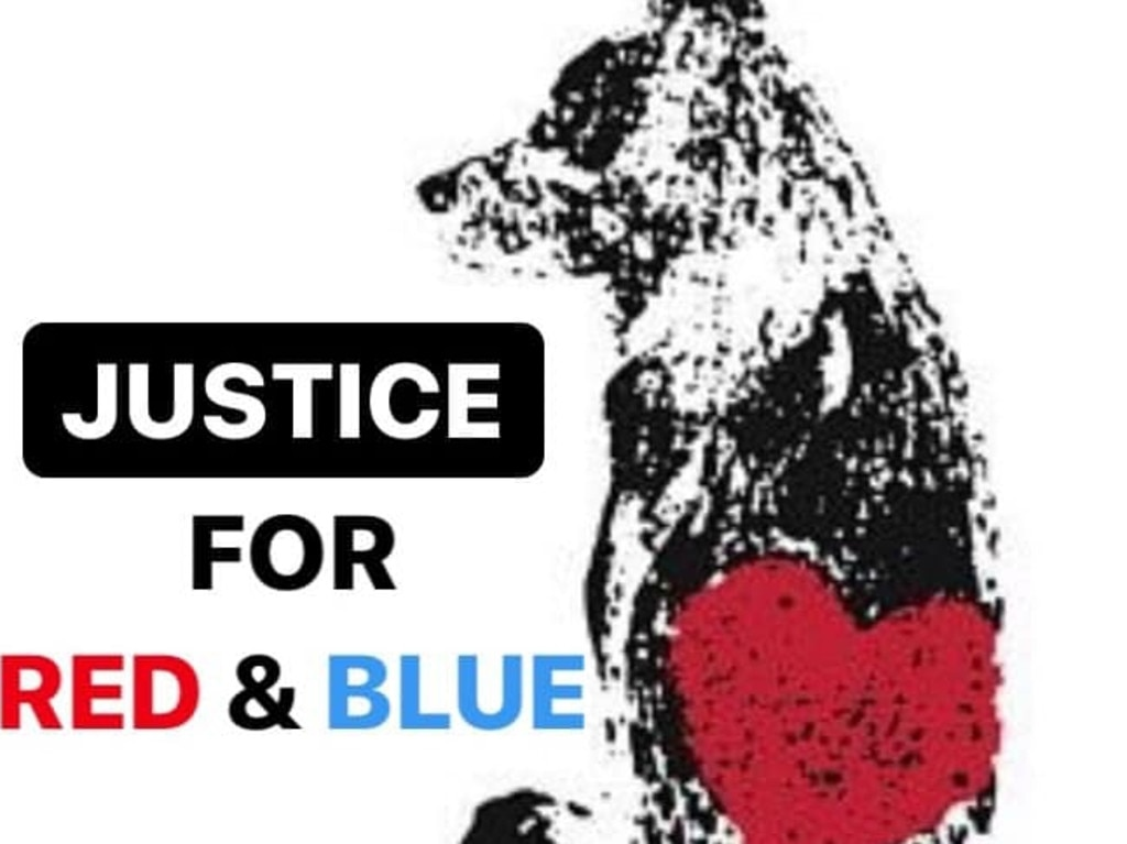 An image from the Justice for Red and Blue Facebook page. Picture: Facebook