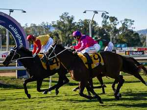 Bat A Kat well placed for Mackay's major sprint