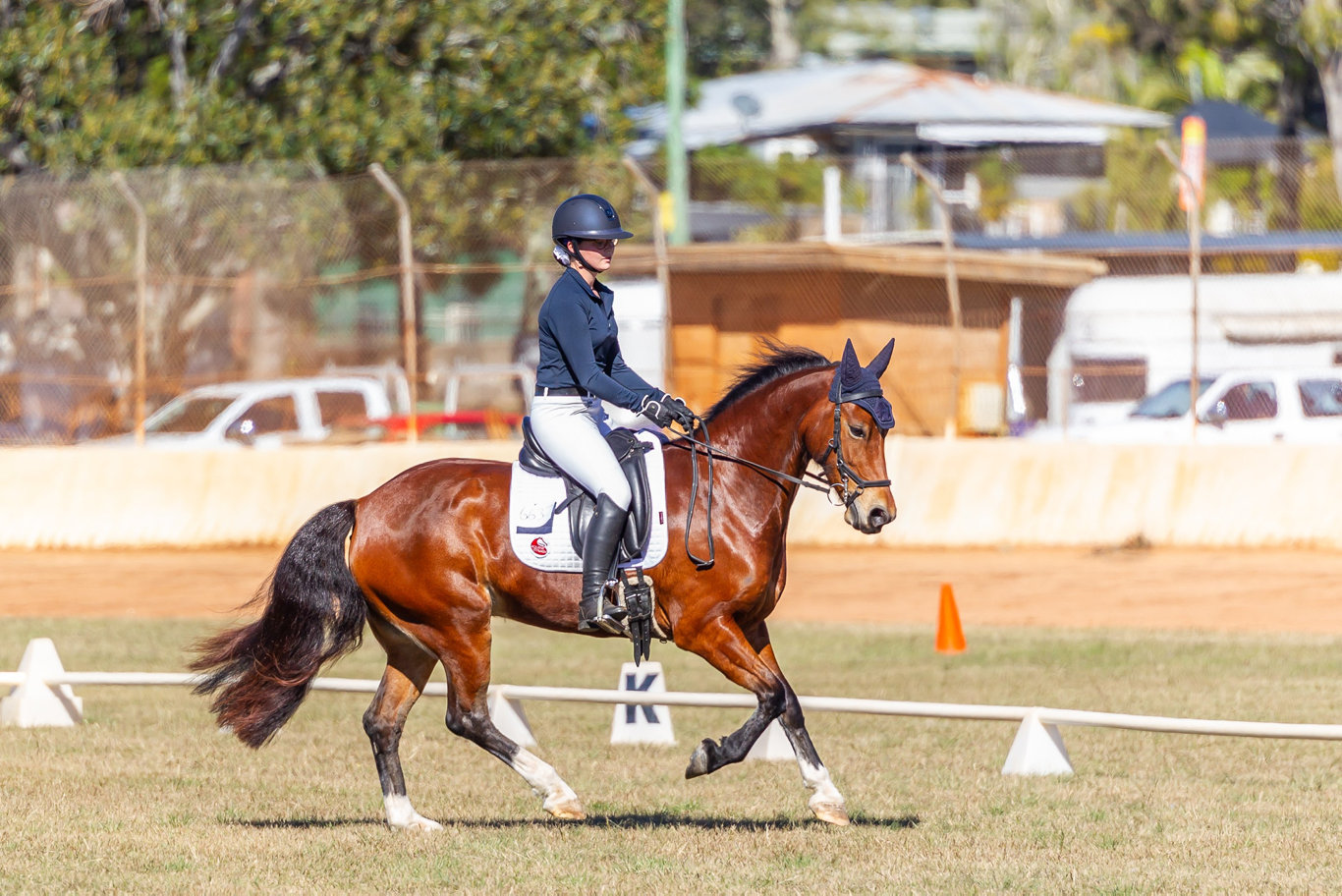 Competitors in action at the recent Lockyer Equestrian Group dressage day. Photo: Braid Up Photography.