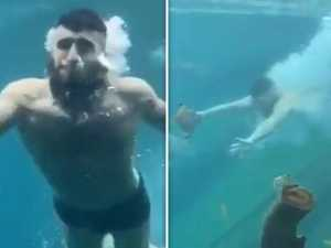 Fury as half-naked prankster jumps into aquarium at Sydney Zoo