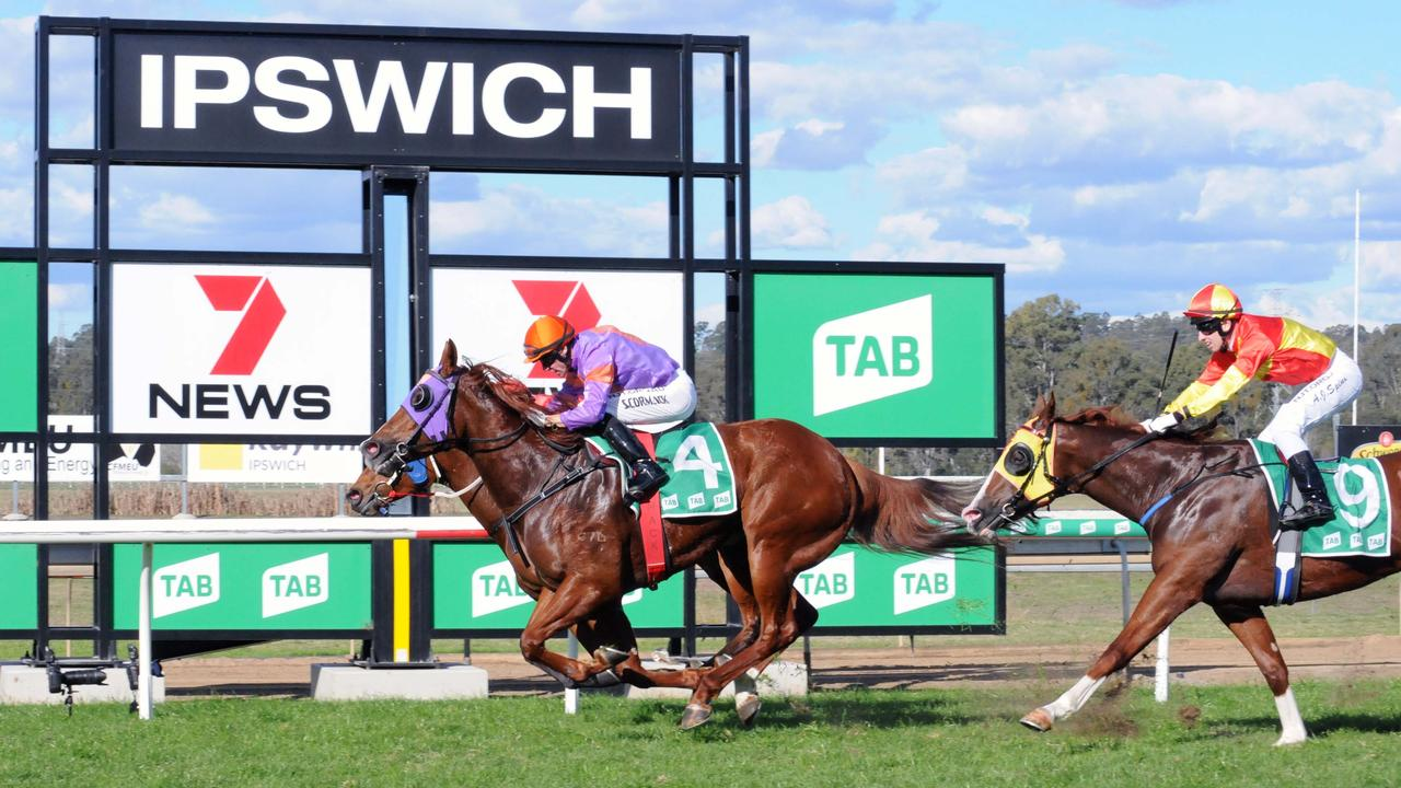 Ipswich winner Little Vulpine, ridden by jockey Sean Cormack. Picture: Claire Power