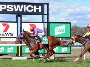 Bonus $50,000 reward for daring Ipswich punters