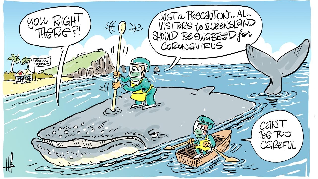 Cartoonist Harry Bruce's take on whales being spotted in Mackay.