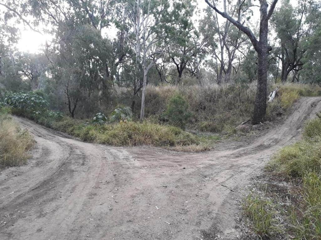 The walking track where Emerald sisters found two dogs with severe injuries.