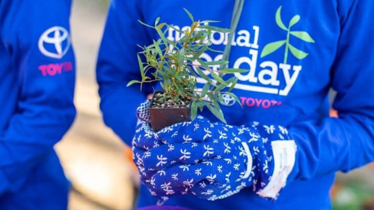 Planting 2000 trees is the goal of local National Tree Day.