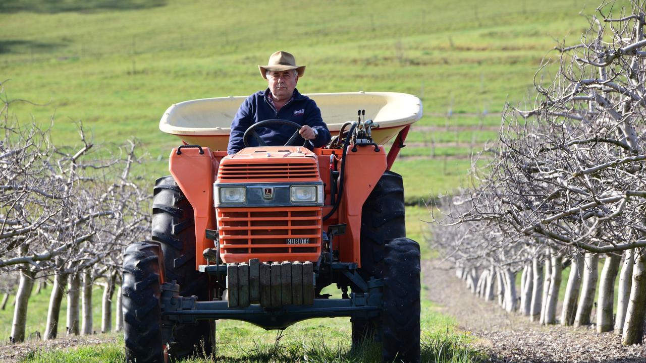 Farmer Guy Gaeta on his farm.